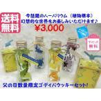 送料無料ハーバリウム(植物標本)&ゴディバクッキーセット
