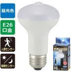 オーム電機 LED電球 40形相当 昼光色 人感 明暗センサー付  LDR5D-W S9