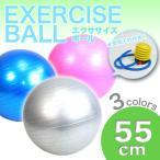 バランスボール 55cm ヨガボール ジムボール ダイエット 空気入れ付き!