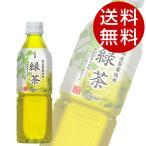 幸香園 緑茶 500ml 48本 (お茶 緑茶) 『送料無料』※北海道・沖縄・離島を除く