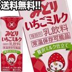 九州乳業 みどり いちごミルク 200ml紙パック×96本 [24本×4箱]   [賞味期限:製造から90日]  [送料無料] 【4〜5営業日以内に出荷】