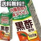 【2月5日出荷開始】メロディアン 黒酢飲料 りんご味 200ml紙パック×48本 24本×2箱 機能性表示食品 賞味期限:2ヶ月以上 1ケース1配送でお届け 送料無料