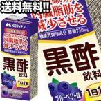 【7月17日出荷開始】メロディアン 黒酢飲料 ブルーベリー味 200ml紙パック×72本 24本×3箱 機能性表示食品 賞味期限:2ヶ月以上  送料無料
