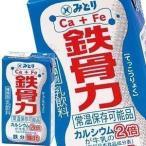 九州乳業 みどり牛乳 LL 鉄骨力 125ml紙パック×54本[18本×3箱][賞味期限:製造日より60日] 送料無料 【3〜4営業日以内に出荷】