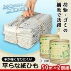 アイメディア 手が痛くなりにくい平らな紙ひも 50m(2コ入)