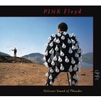 Pink Floyd ピンクフロイド   Delicate Sound Of Thunder Live
