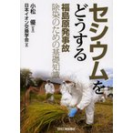 セシウムをどうする 福島原発事故除染のための基礎知識