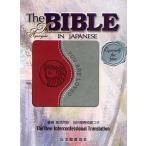 聖書 新共同訳 旧約聖書続編つき