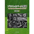 プラント・オパール図譜 走査型電子顕微鏡写真による植物ケイ酸体学入門