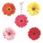 花は咲く(CD)
