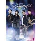 美男ですね DVD-BOX 1(DVD)
