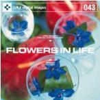 DAJ 043 FLOWERS IN LIFE