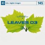 DAJ 145 LEAVES 03