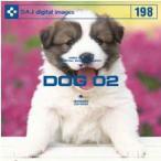 DAJ 198 DOG 02