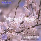 MIXA BIG vol.002 Japanese Image