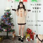 コスプレ衣装  サンタ  女性用 Aラインワンピース 中袖 2点セット レディース ハロウィン クリスマス  X'mas