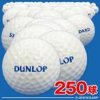 ダンロップ 練習用ゴルフボール(レンジボール) スタンダードSF 250球入り スタンダードタイプのワンピース 打ちっぱなし練習場使用ボール