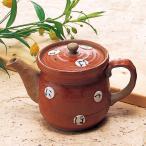 ティーポット 土瓶 急須/ いろはポット(赤) /お茶 紅茶 業務用 家庭用 ギフト プレゼント 贈り物