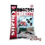 ペッズイシバシ クオリス 野鳥のごちそう 自然食タイプ 2.8kg