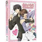 世界一初恋 第1期+第2期 北米版DVD 全24話+OVA収録