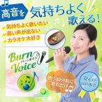 カラオケ 高音 いびき サプリ BURN VOICE (バーンボイス) リンゴ酸&マグネシウム シナモン ガラナ 声のケア サプリメント 62粒