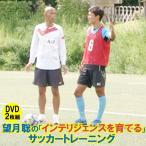 DVD 望月聡の「インテリジェンスを育てる」サッカートレーニング  びわこ成蹊 サッカー コーチング 女子サッカー 指導法