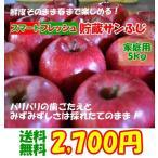 山形県産 サンふじ りんご 家庭用5kg スマートフレッシュ貯蔵りんご 産地直送 送料無料