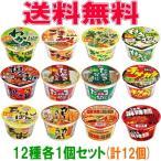 大黒 カップ麺ビッグシリーズ 12種各1個セット(計12個) 大盛り カップ麺 ラーメン 『送料無料(沖縄・離島除く)』