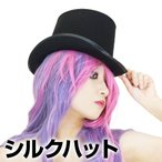アウトレット特価ステージ衣装 DJ59265 シルクハット ブラック マジシャン 衣装 ハロウィン コスプレ ステージ衣装