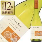 よりどり12本送料無料 コノスル ヴィオニエ ヴァラエタル 2016 750ml 白ワイン チリ