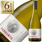 白ワイン チリ コンチャ イ トロ テルーニョ ソーヴィニヨンブラン 2013 750ml wine