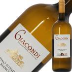 白ワイン イタリア ジャコンディ ヴィーノ ビアンコ マグナム NV 1500ml 1梱包6本まで同梱可能 wine