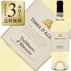 白ワイン イタリア 6本購入でグラス2脚 テッラ ダリージ トレッビアーノ ダブルッツォ DOC 2016 750ml wine