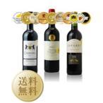 赤 ワイン セット 送料無料 トリプル金賞受賞 ボルドー赤ワイン 3本セット 第17弾 750ml×3