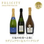 スパークリング ワイン セット 送料無料 ラグジュアリースパークリング ワイン&スプマンテ 3本セット 第5弾 750ml×3