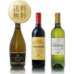 ワインセット 旬の食材が惹き立つ! 秋のワイン 3本セット 第3弾 750ml×3 送料無料 wine set