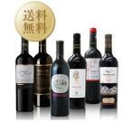 赤 ワイン セット 送料無料 高評価造り手の珠玉のラインナップ!赤ワイン 6本セット 第4弾 750ml×6