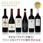 赤ワインセット ワイン王国「イタリア」の赤ワイン6本セット 15弾 750ml×6 送料無料 包装不可 飲み比べ ワインセット wine wain