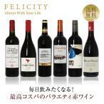ポイント5倍 赤ワインセット 毎日飲みたい!最高コスパワイン バラエティ 赤ワイン 6本セット 第6弾 750ml×6 送料無料 包装不可 飲み比べ ワインセット