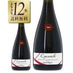 メディチ エルメーテ ドルチェ 正規 750ml スパークリングワイン イタリア