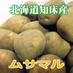 【送料無料】越冬じゃがいも【北海道知床産】ムサマル 20kg