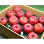 信州 安曇野 あらやファームのりんご サンふじ 約5kg