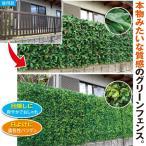 リアルグリーンフェンス