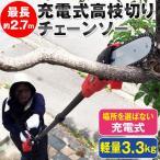 充電式高枝切りチェーンソー TCS-002