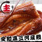 愛知県三河産 鰻蒲焼3尾セット 主