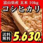 富山県産こしひかり コシヒカリ 10キロ おいしいお米