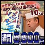 岐阜県産はつしも ハツシモ 10キロ おいしいお米