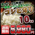 岐阜県産こしひかり コシヒカリ 10キロ おいしいお米