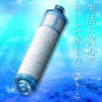 あすつく あすつく LIXIL INAX オールインワン浄水栓 交換用カートリッジ 高塩素除去タイプ 1本[JF-21] 【リクシル】【イナックス】