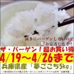 夢ごこち お米 5kg 4月のバーゲン